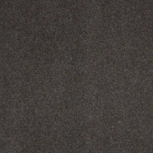 CFS Atlas Brown 7729 Carpet
