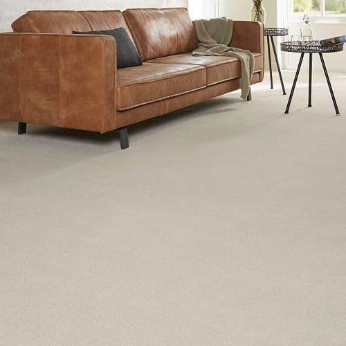 CFS Venus Carpet