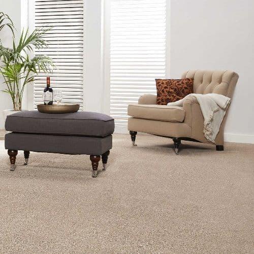 Condor Revolution Secondary Back Carpet