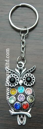 Owl Key Ring Bird of Prey Strigiformes Keyring