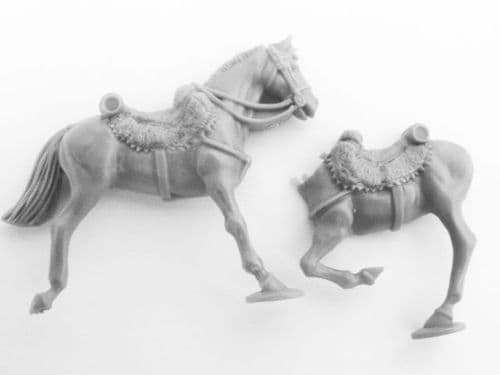 chasseur a cheval horse