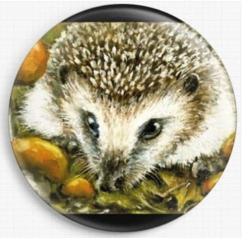 Hedgehog and Yummy Mushrooms By Tanya Bond Needle Minder
