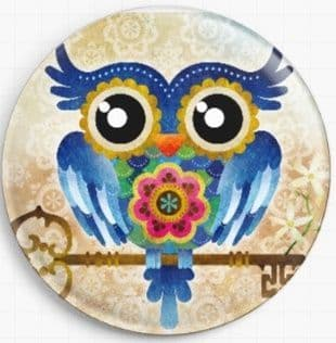 Owl Key By Sandra Vargas Licensed Art Needle Minder
