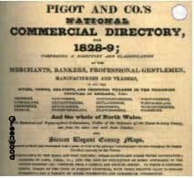 1828-9 PIGOT & CO'S NATIONAL COMMERCIAL DIRECTORY - CD